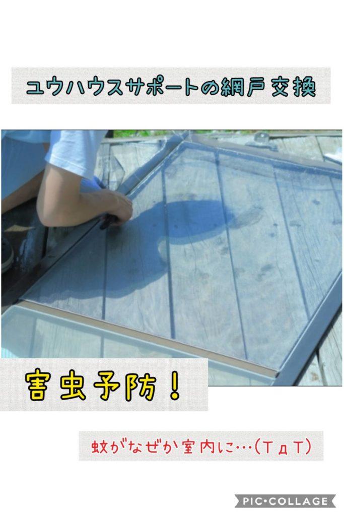 網戸の網は定期的に交換したほうがいいと営業マンのわたしは木津川市の方に伝えたい!